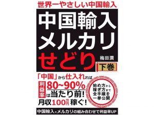 Kindle「世界一やさしい中国輸入: 月収100万稼ぐ手法 上下巻」を読んで100万円稼げるか!?